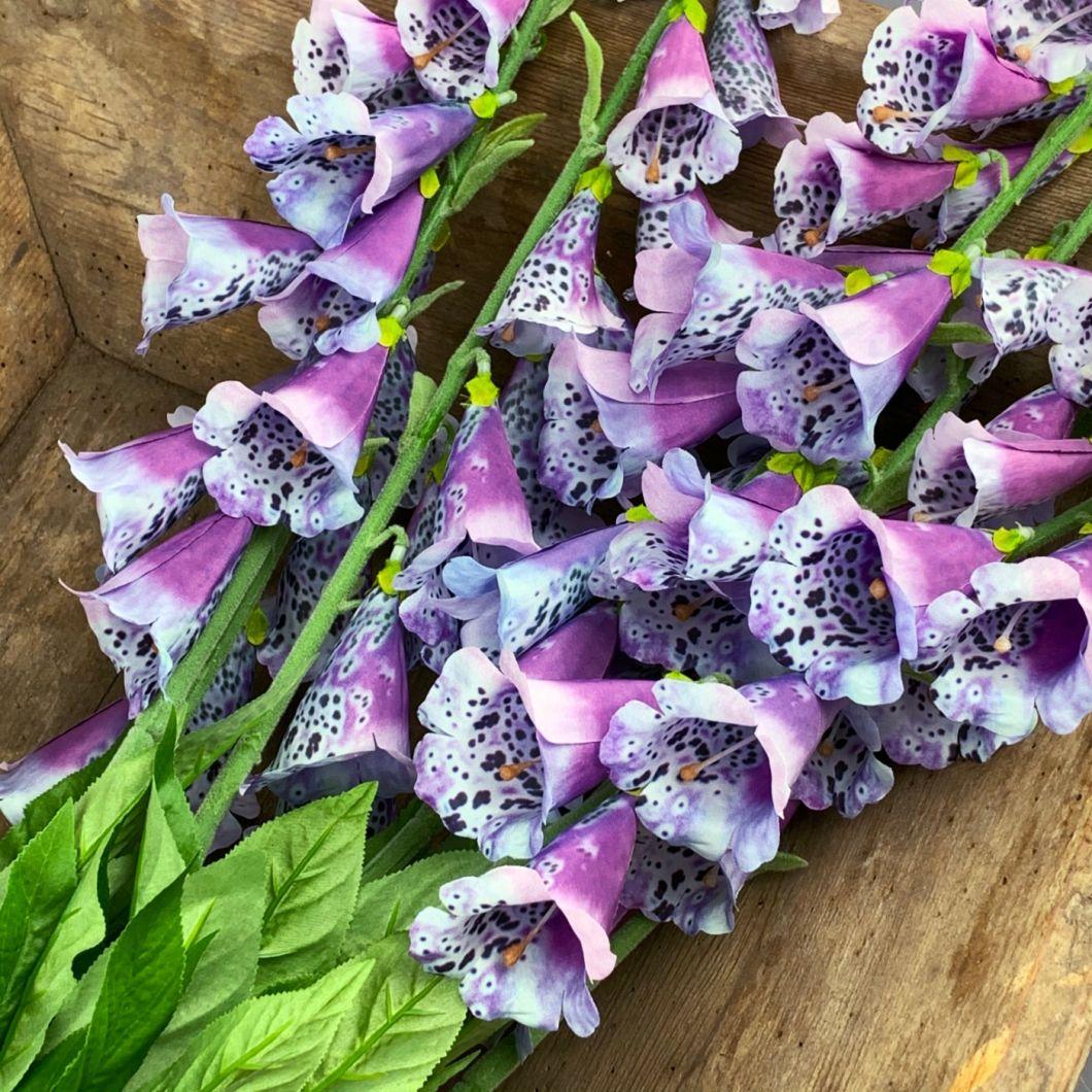 Foxglove, Purple, 107 cm - www.BrandonThatchers.co.uk