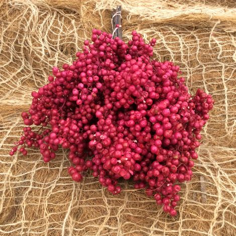 Sweet Pepper Berries, Red, Bunch is approx. 35 cm long and 18cm wide. Natural, dried floral deco