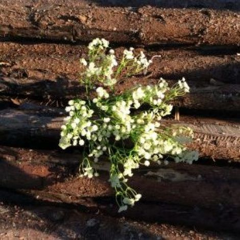 Gypsophila Spray, approx. 56cm tall with 24 flower clusters, artificial, on poseable stem