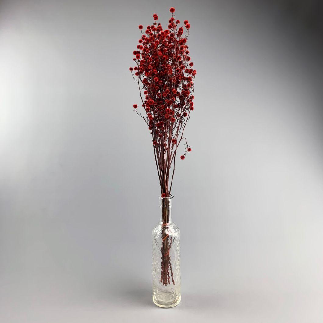 Stirlingia Red, Approx. 79cm - www.BrandonThatchers.co.uk