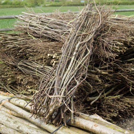 Forest Bundle, approx. 2m long by 30 cm diameter, rough cut woodland sticks. Natural, UK grown indigenous wood.