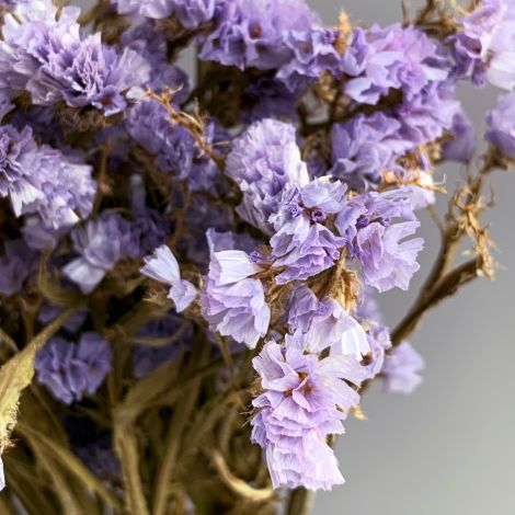 Statice, Lilac Bunch, approx. 75cm tall natural dried flowers, indigenous UK grown