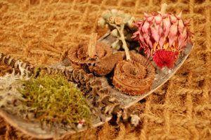 Brandon-Thatchers-bark-sheet-moss-lichen-banana-stem-palm-ring-eucalyptus-star-medium-cynara-coir-pillow-exotics-e1506426272580.jpg