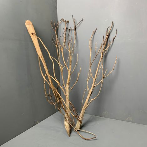 Tara Tree Branch approx. 105 cm Tall with a 20 cm Spread. Natural Dried Floral Deco