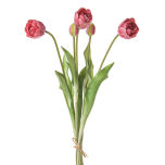 Prestige-Tulip-Bundle-Pnk-45cm.jpg