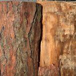 Bark cladddin1a.jpg