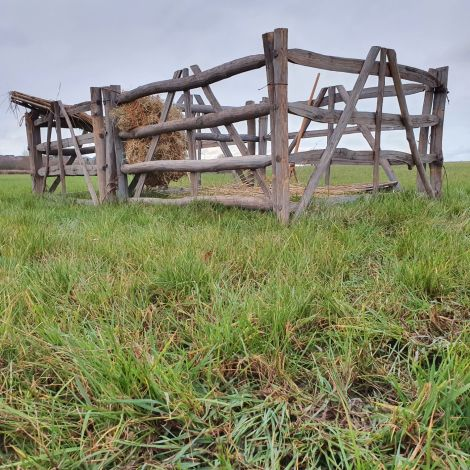 Double Animal Pen -7 x Chestnut Sheep Hurdles, Hay Net, Wooden trough, Wooden hay fork, Thatched shelter, Loose Straw. Rental Only