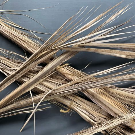 Palm Frond, approx. 3.3 m tall. Natural, dried material