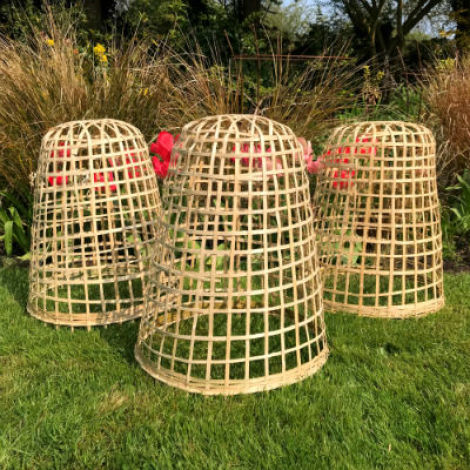 Bamboo Cloche, approx. 40, 50 or 60 cm high. Natural hand woven