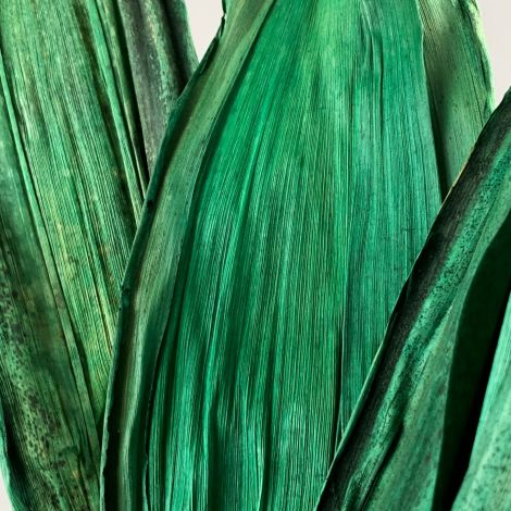 Emerald Wild Leaves x 10 approx. 45 cm long by 10 cm Wide. Natural Dried Floral Deco