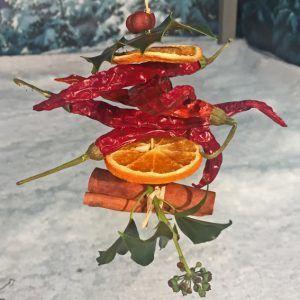 Dried-fruit-tree-dec-ChilliU-sm-Copy-e1506435169170.jpg