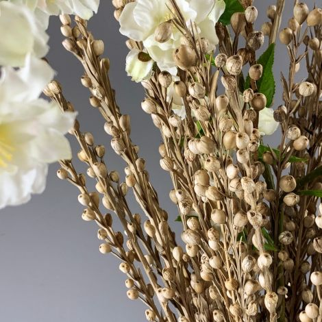 Mioti Sticks x 10 stems, approx. 65 cm long, Natural Floral Deco