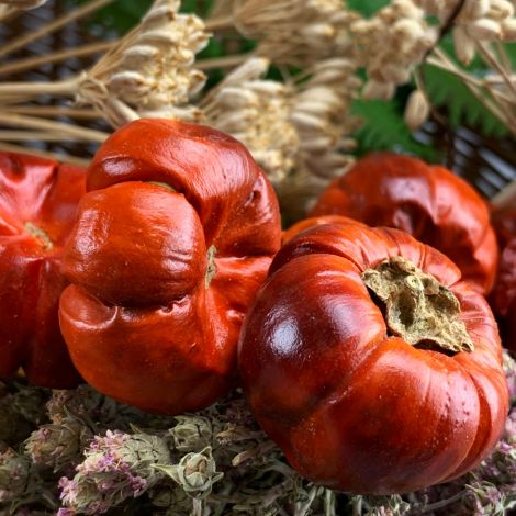 Pumpkins, glossy red 100-gram bag /15 fruits, approx. 35 mm diameter, natural, dried floral deco