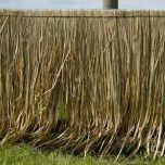 Grass Thatch – www.BrandonThatchers.co.uk