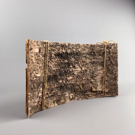 Silver Birch Bark Bundle, 5 piece , textured cladding