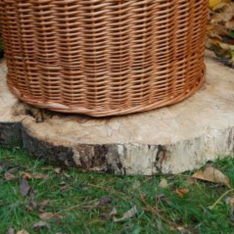 "Bee Skep Base, slice of tree trunk approx. 2' diameter by 3"" deep"