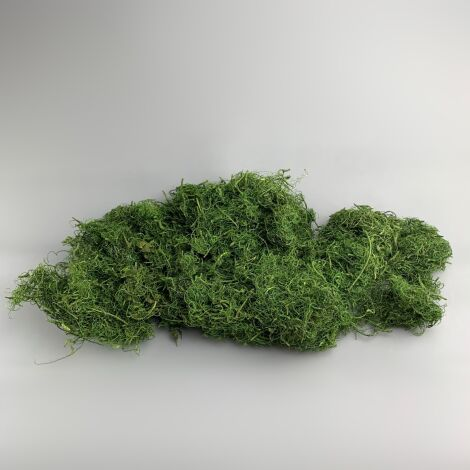 Curly Wood Moss, Green. Dried in 1 kg bag. Ideal for props, dressing or greens