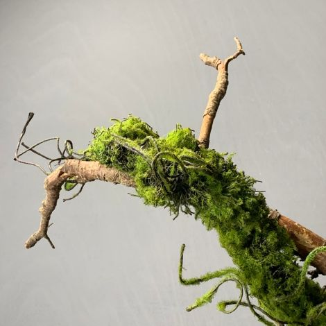 Moss Vine, approx. 120 cm long, posable with wired stems, artificial