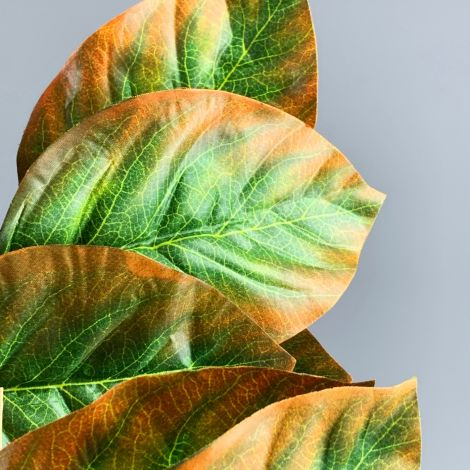 Tropical Leaves Stem,15 x (17 cm x 11 cm)leaves on 70 cmLong artificial spray, posable wired stem