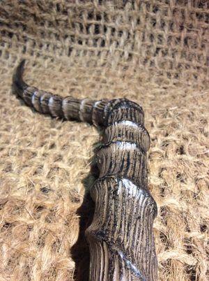 Antelope-Antlers-2-e1506094482413.jpg