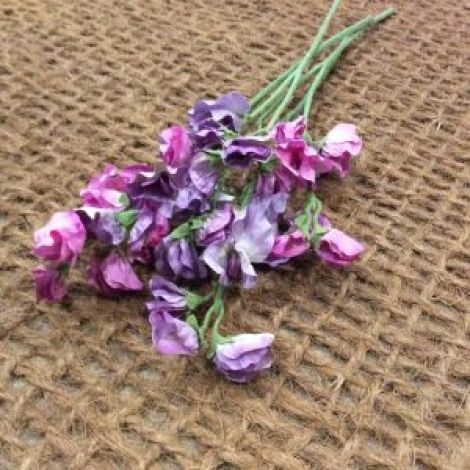 Sweet Peas Spray