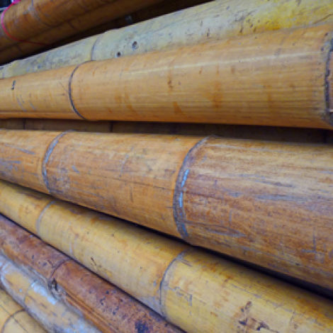 Bamboo Pole, 30 to 140 mm diameter by 4 m long