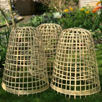 bamboo-cloche3.jpg