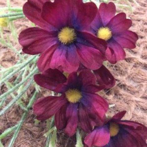 Cosmos, Damson, 5cm head, 68cm hight artificial flowers