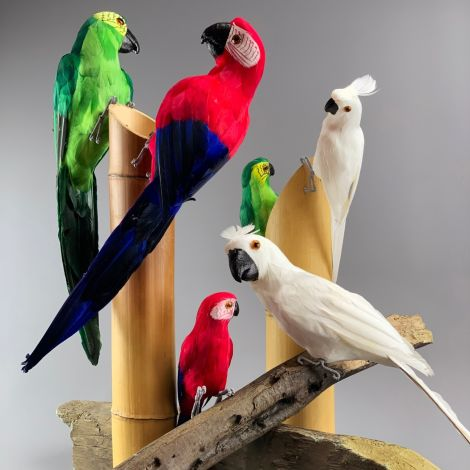 Amazon Parrot, Faux Feathered Friend - 30 or 50 cm Tall- Red, Green, Blue or White. THE must have Tiki Bar accessory!