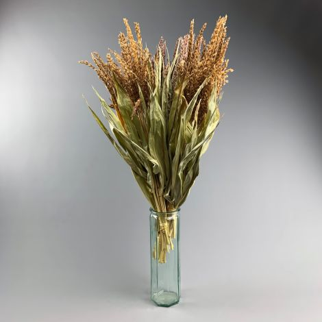 Maize Flowers, approx. 65 cm tall x 40 cm wide dried  bunch, indigenous, UK grown
