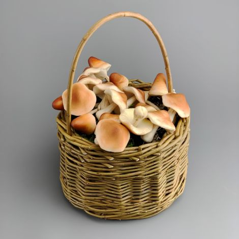 Foraging Basket, approx. 23 cm dia. by 33 cm tall with handle. Natural hand woven willow