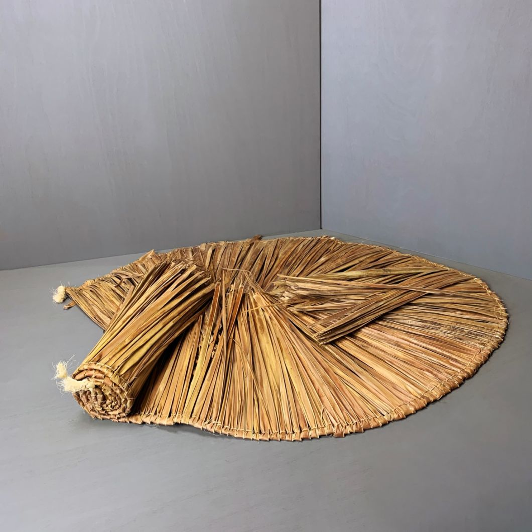 Palm Leaf - www.BrandonThathers.co.uk