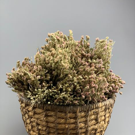 Thyme, 30cm long by 10 cm wide dried herb bunch, indigenous UK grown