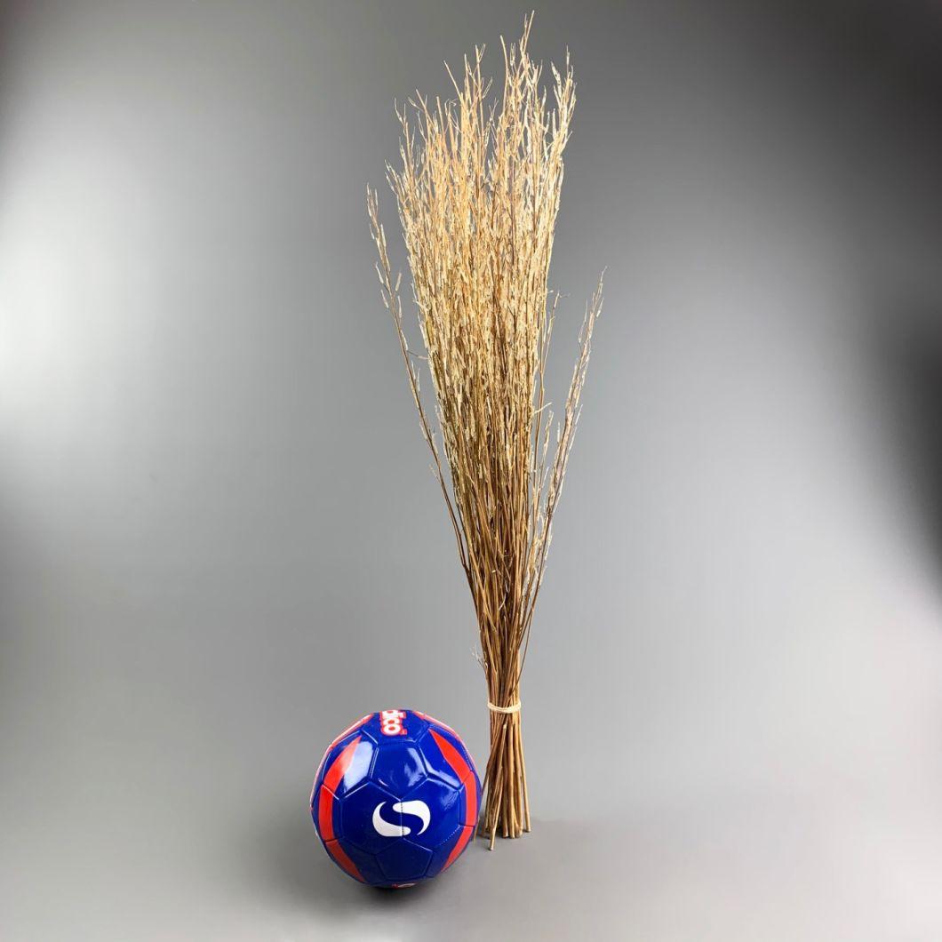 Sarass Grass, 1 m long - www.BrandonThatchers.co.uk