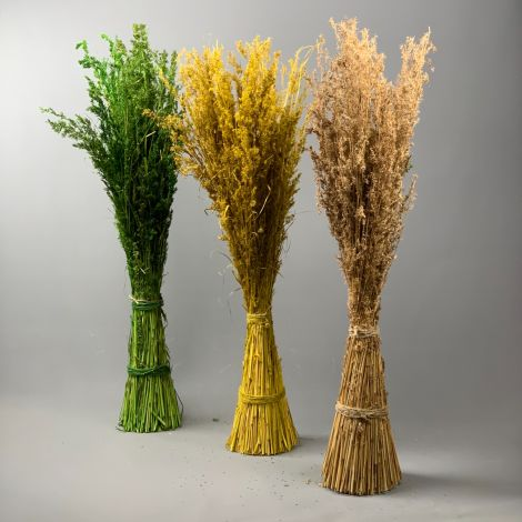 Prickle Reeds, approx. 1.3 m tall by 25 cm diameter dressed bundle, dried floral deco