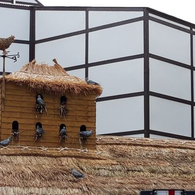 Thatching For Pop-Up Events
