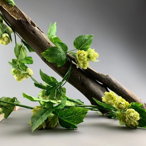 Hop Vine, approx. 185 cm long with 40 flowers 5cm dia. And 60 leaves. Artificial bloom with posable wired stem