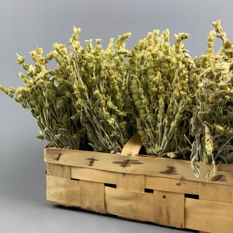 Mountain Tea, approx. 40 cm long by 10 cm wide dried herb bunch