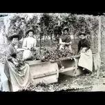 Hop Pickers Scene - W.jpg